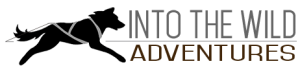 into-the-wild-adventures-logo_small